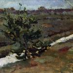 Левитан ИИ Ранняя весна Молодая сосна 1880е хм 14х22 Калмыцкая картинная галерея