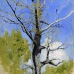 Левитан ИИ  Ствол распускающегося дуба 1883-84  км 35х25  Гос музей изобразительных искусств Кыргызстана