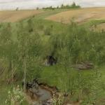 Левитан ИИ  Уручья 1899  к пастель 62х48  ГТГ